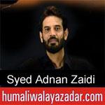https://humaliwalaazadar.blogspot.com/2019/09/syed-adnan-zaidi-nohay-2020.html