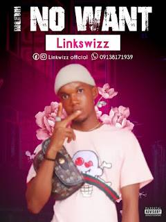 Music: Linkswizz - I No Want
