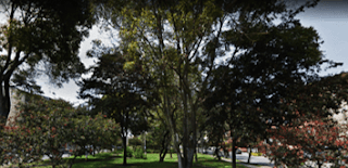 PARQUE VERAGUAS CENTRAL | LOS MARTIRES Bogota