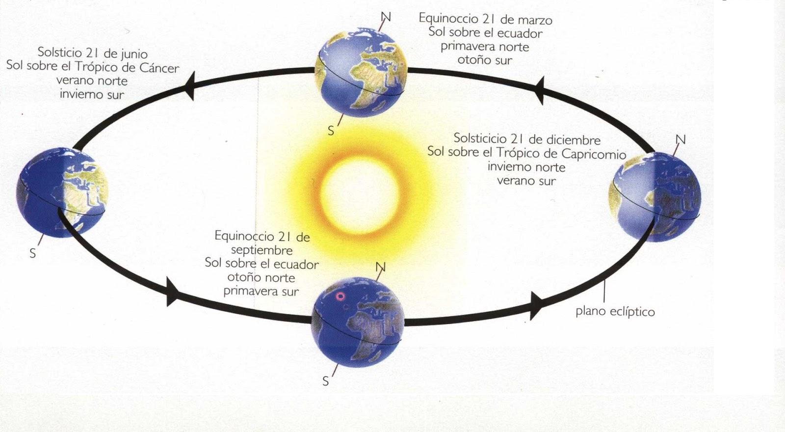circular relationship in primavera