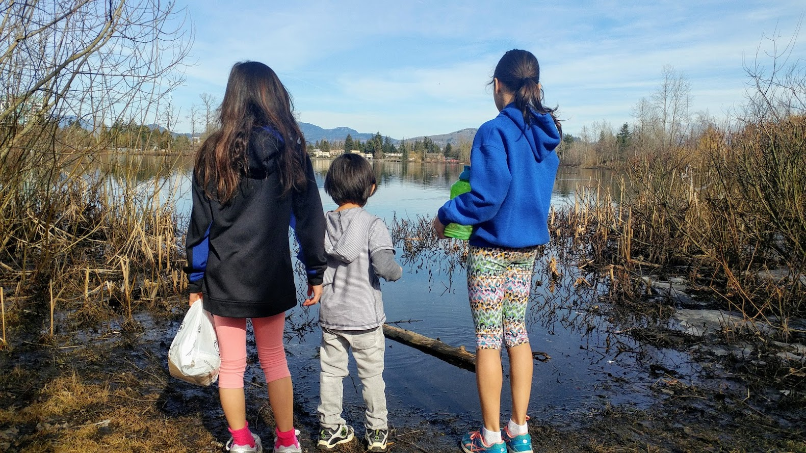This is the year 2019. My kids are off from school for two weeks of spring beak, so we all agreed to explore the Mill Lake Park once more. Exploring the outdoors, especially nature, is a perfect way to stay away from electronics and screens.