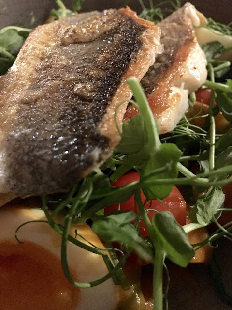 sea bass. The Maynard Arms, Crouch End, food blogger #review