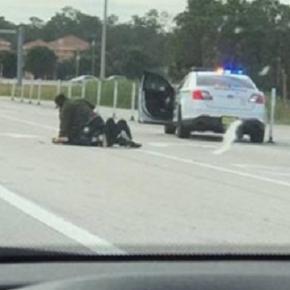 VÍDEO: Nos EUA motorista salva policial atacado por bandido em estrada