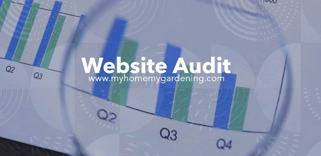 Website Audit คืออะไร