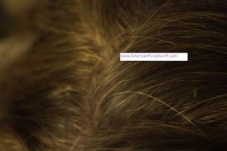 henna dye for stubborn gray hair