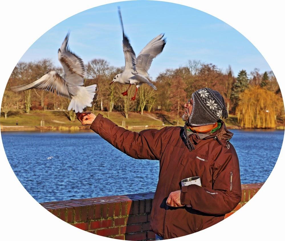Vögel füttern, Hamburg Stadtpark