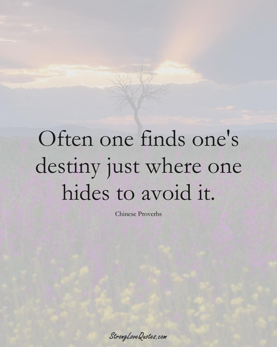 Often one finds one's destiny just where one hides to avoid it. (Chinese Sayings);  #AsianSayings
