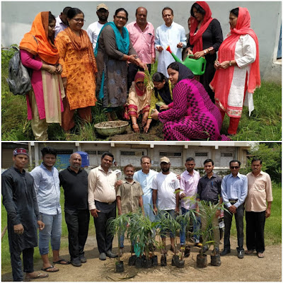 Trees Plantation By Teachers Of Anjuman Islamia Trust Jabalpur Madhya Pradesh