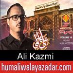 https://www.humaliwalyazadar.com/2018/09/ali-kazmi-nohay-2019.html