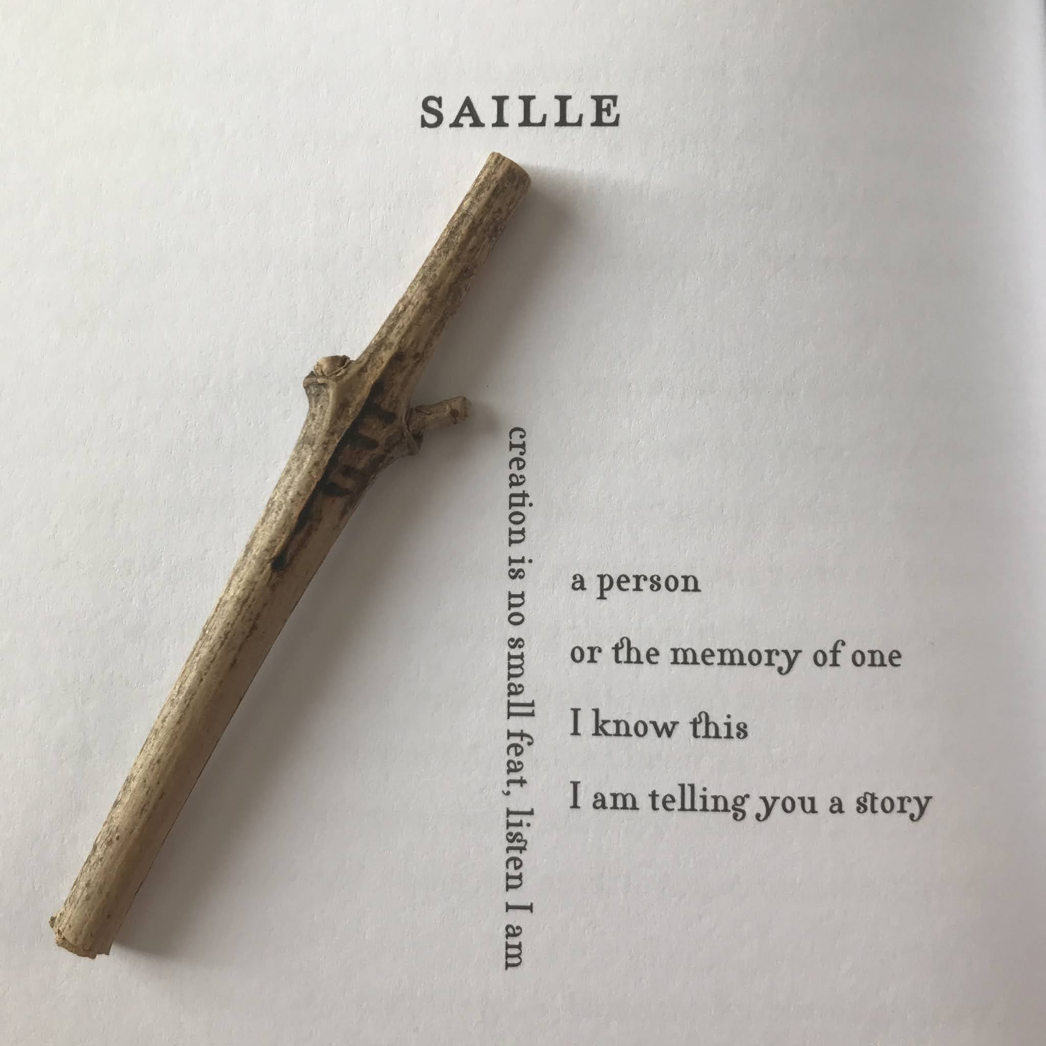 A photo of one of the Ogham Calligrams in Savage Her Reply, Saille, along with the twig with the same Ogham rune carved into it I was sent along with my review copy