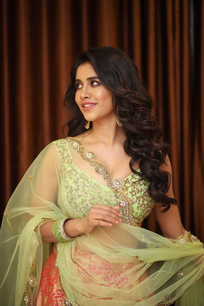 Bollywood Actress NabhaNatesh HotPhotos MakeUp BeautyTips Fashion WallPapers Biography Wikipedia MoviesList VideoSongs Photoshoots