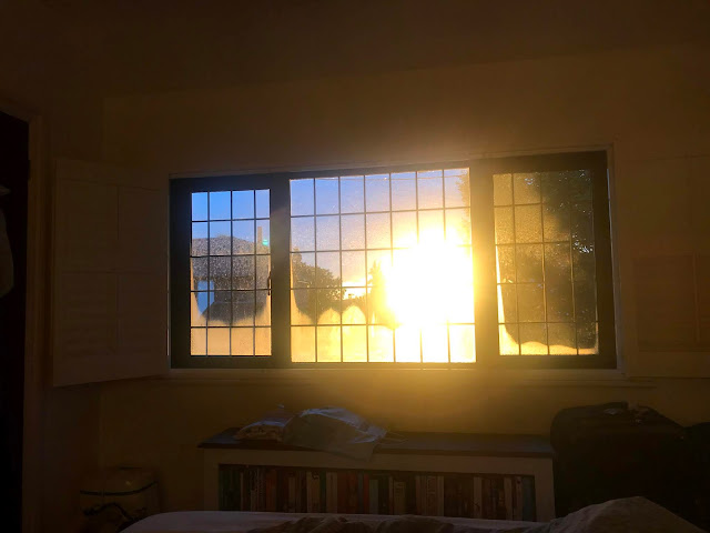 sunrise as seen through slightly condensated leaded windows and with a street lamp outside