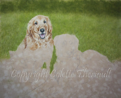 Golden Retriever Dog Portrait Painting in progress