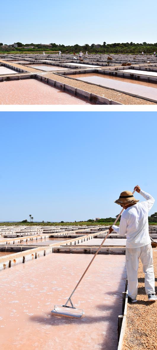 Flor de Sal d'Es Trenc: Das weiße Gold Mallorcas