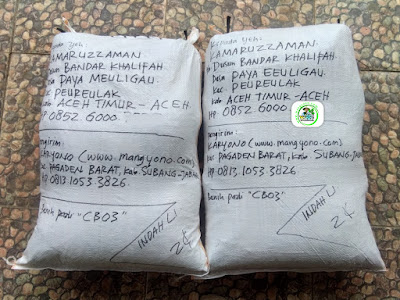 Benih Padi Pesanan  KAMARUZZAMAN Aceh Timur, Aceh.   (Setelah di Packing).