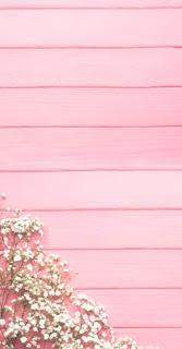 5000 Wallpaper Hp Pink  Gratis