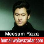 http://www.humaliwalayazadar.com/2016/09/meesum-raza-nohay-2017.html