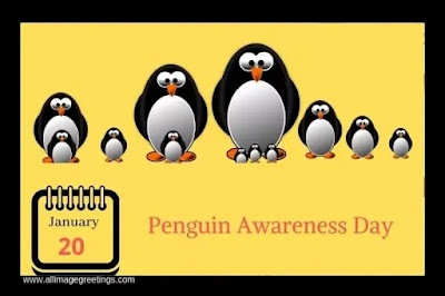penguin Awareness Day pic
