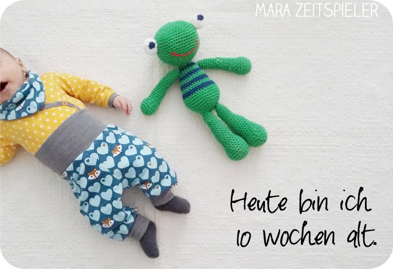 2017 ~ Mara Zeitspieler