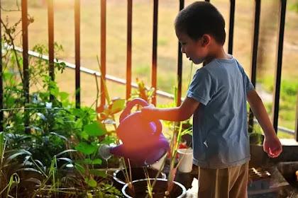 Agenda Menarik Bersama si Kecil : Bertanam Makanan Kaya Serat