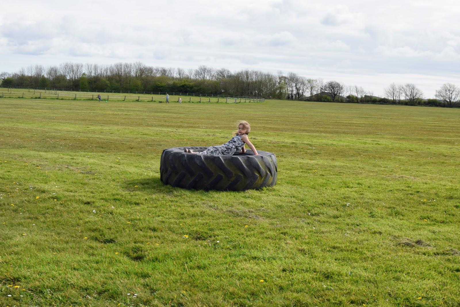 , Pembrokeshire Walks:  Haverfordwest Race Course