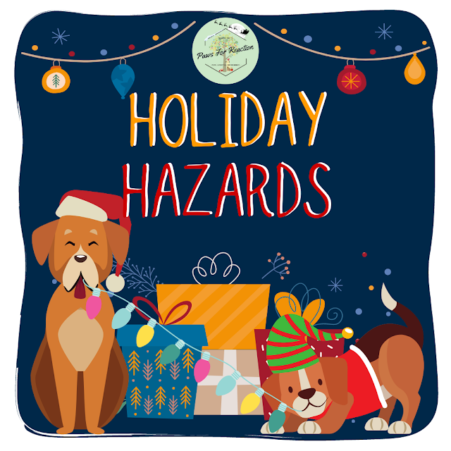 Holiday hazards for your pet: Safety tips to keep pets safe during Christmas season