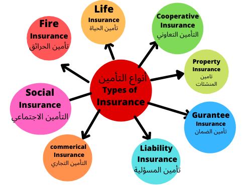 مصطلحات وأنواع التأمين المختلفة باللغة الإنجليزية