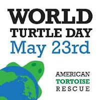 World Turtle Day.