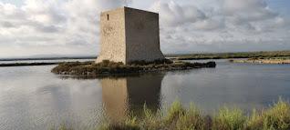 Torre del Tamarit, Torre de la Albufera o Torre de las Salinas.