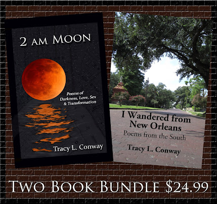 2 AM Moon Tracy L. Conway