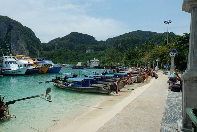 หาดต้นไทร เป็นอ่าวที่สำคัญที่สุดแห่งหนึ่งของเกาะพีพี เพราะเป็นท่าเรือหลักของเกาะ