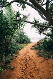 Menjelajahi Beruwala Dan Bentota, Sri Lanka