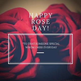Rose Day Status