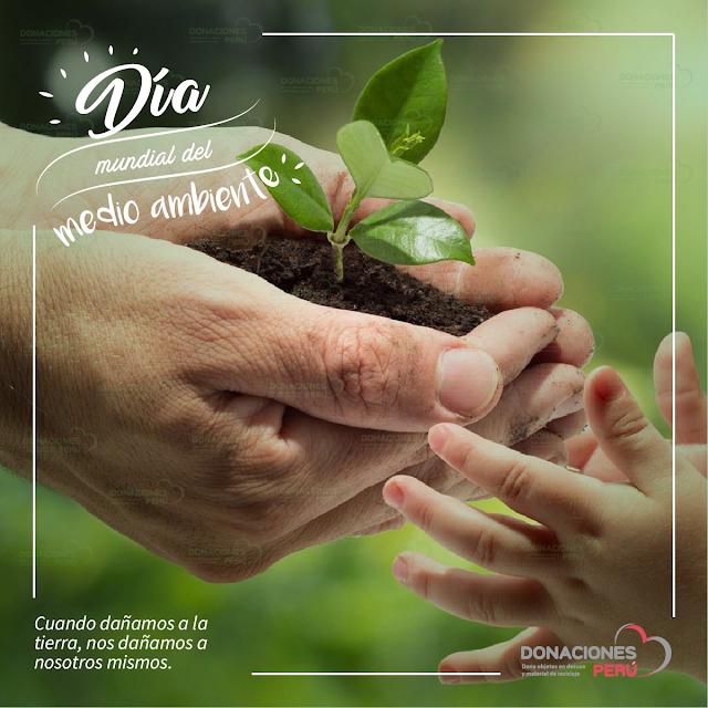 Medio ambiente - Donaciones Perú - Recicla - Dona