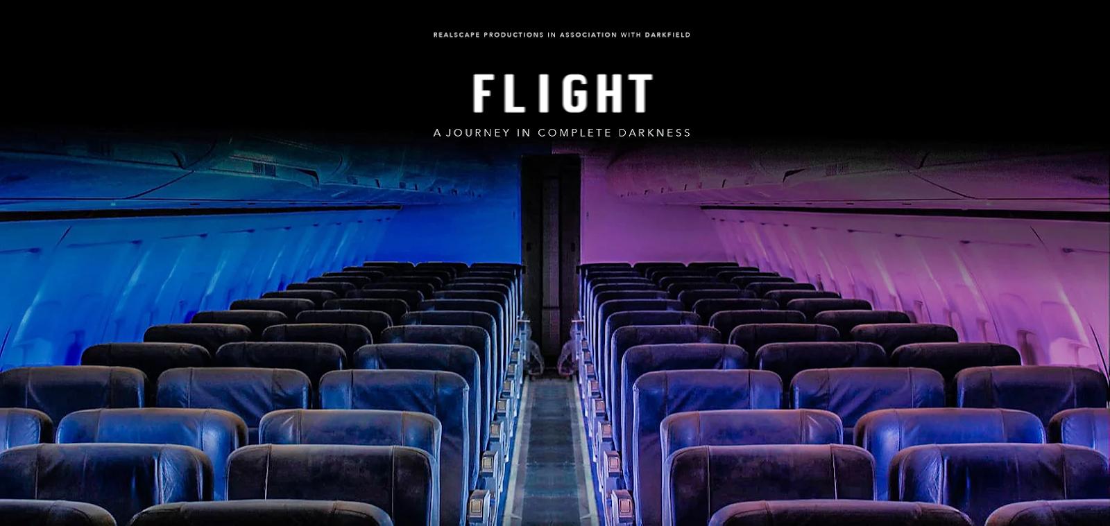 Darkfield Flight| Ein Flugzeugabsturzsimulator
