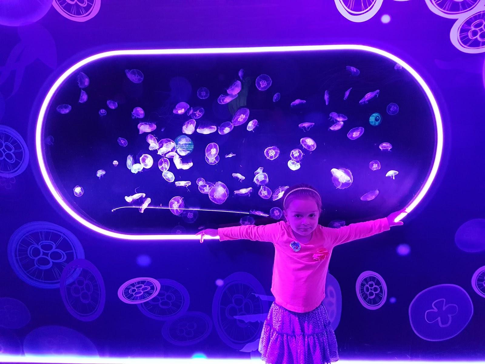 girl standing at ocean invaders jellyfish exhibition london aquarium