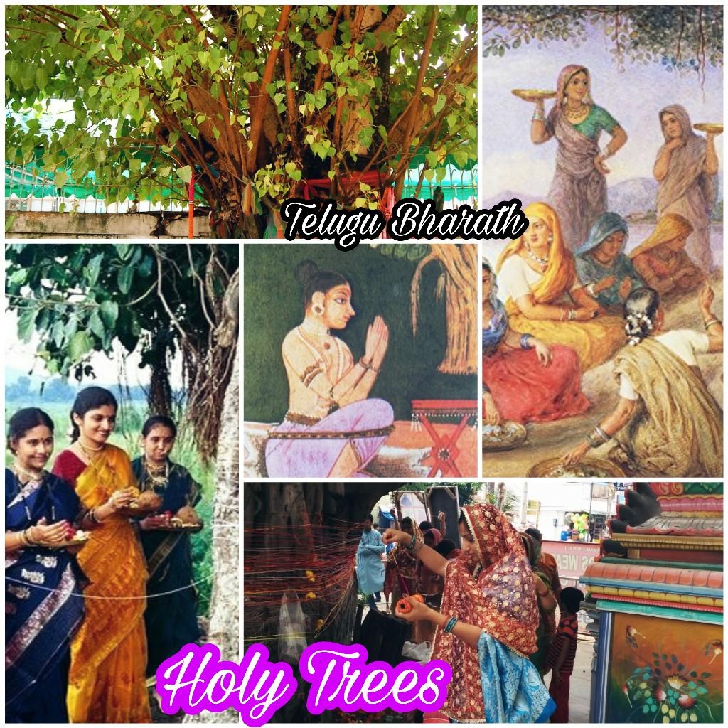 పవిత్ర వృక్షాలు - Holy trees