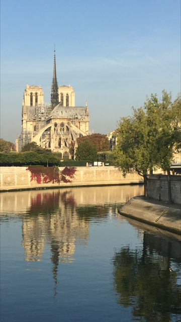 Notre Dame and its reflect photo Nathalie Molho