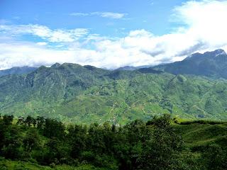 Vietnam, Sapa, rice paddy, rice terrace, rizière