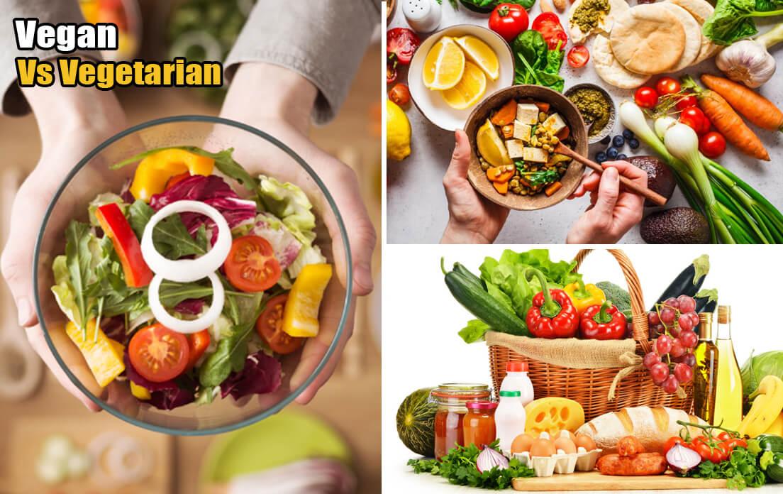 vegan vegetarians exlude what from their diet