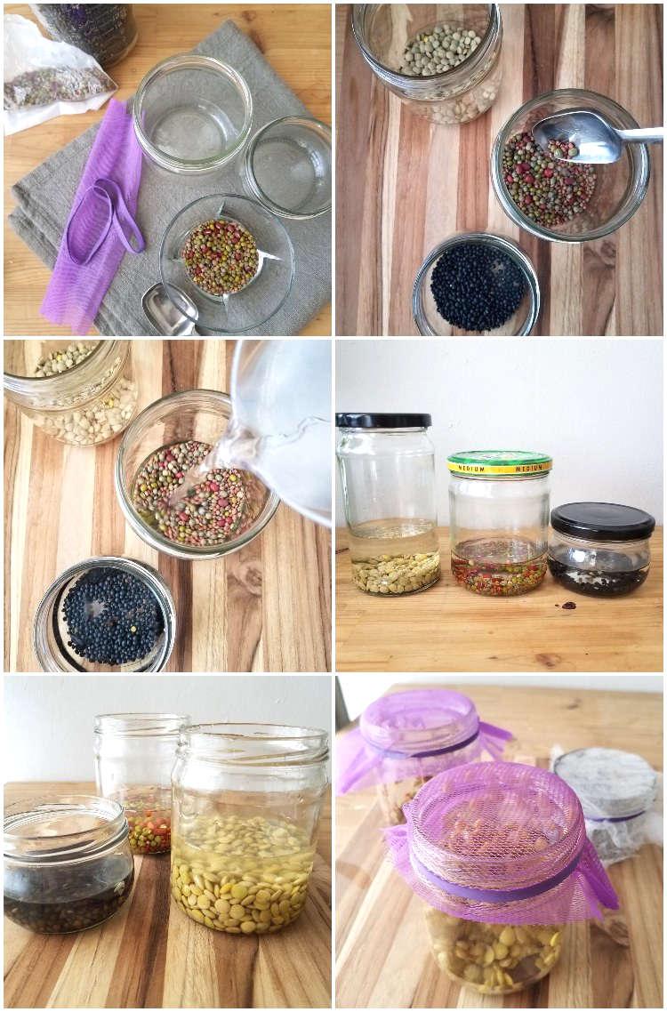 Remojo de las semillas y preparación de los frascos para germinar