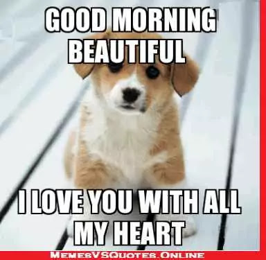 Good Morning  beautiful memes for her, love with all my heart