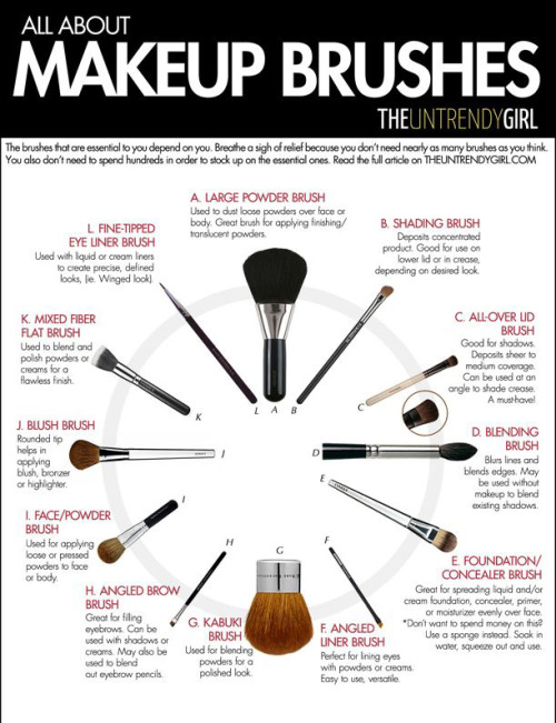 Makeup brushes infogrpahics