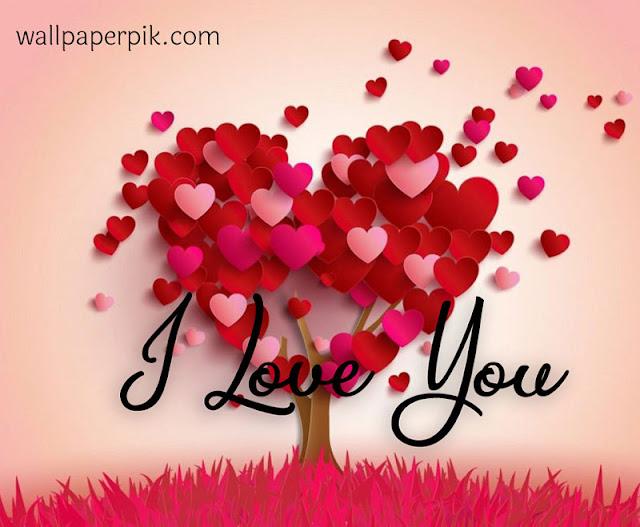 heart flower love you दिल  लव यू image  HD वॉलपेपर  लव यू पिक्स
