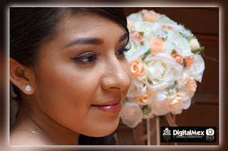 DigitalMex-album-de-fotos-para-15-años-en-toluca-Alejandra