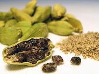 Kakule bitkisi meyveleri ve tohumları