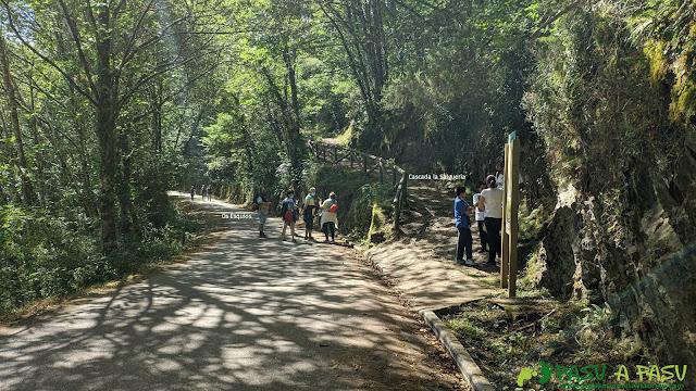 Desvío a la Cascada de la Salgueira