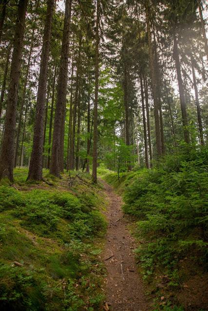 Bernsteinweg Schnaittenbach  Wandern im Amberg-Sulzbacher Land 10