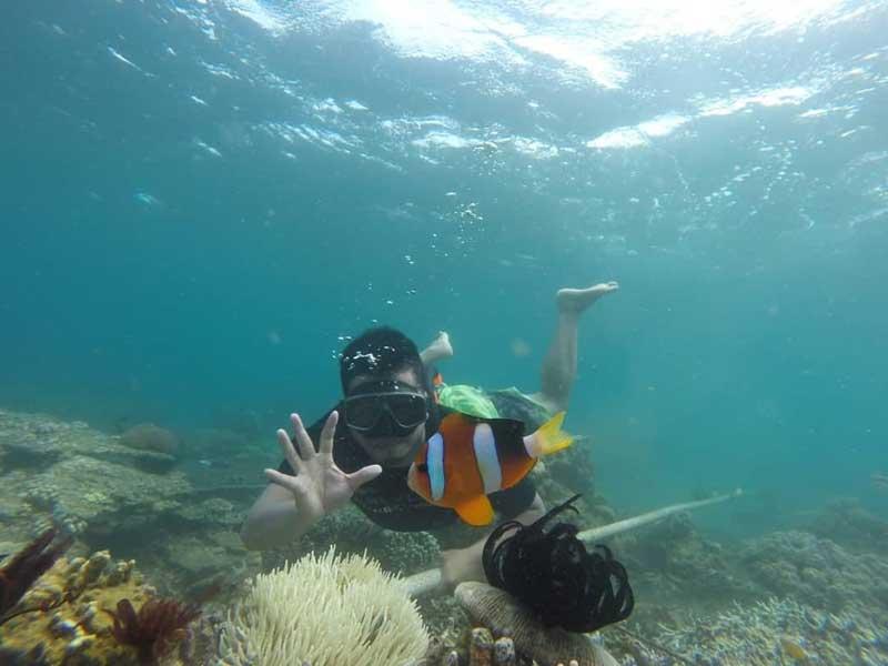 Harga Tiket Masuk Bangsring Underwater