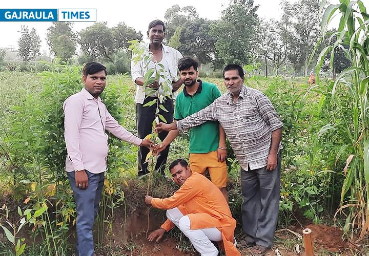 डॉ. उत्तम सिंह प्रजापति ने पौधे लगाकर मनाया डॉक्टर्स डे और अपना जन्मदिन